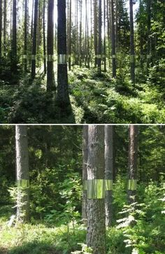 Joakim Kaminsky and Maria Poll ~ (2011) went into the deep forests of Medelpad in northern Sweden. With them they brought 15 meters of mirror-coated fabric aiming to create an installation that would interpret the life cycle of this pine forest. via Oddee.com