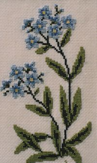 Forget Me Not Cross Stitch Kit-Sandra Greba