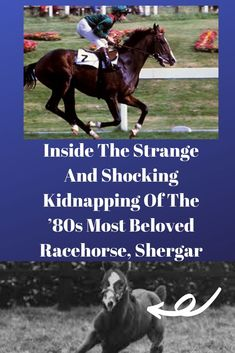 Shergar was one of the greatest racehorses the world had ever seen when he was kidnapped in His case remains open today. English Horse Racing, Horse Diving, Kevin Reynolds, Bobby Sands, Lose Water Weight, Epsom Derby, Exercise Activities, Northern Irish, Thoroughbred Horse