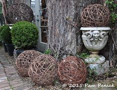 Twig spheres, massed along a wall draped with still-dormant vines, echo the shape of clipped boxwood shrubs and create a classically beautiful vignette.