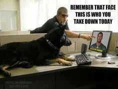 .and this dog could do it, too