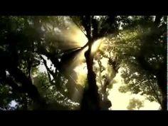 Rays of sun by Ulrica Paths, Spirituality, Nature, Ram Dass, Outdoor, Image, Beautiful, Sunny Days, Zen