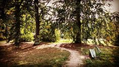 New photo online Lonely #bench in #autumn - #fall #breeze Hope you like it