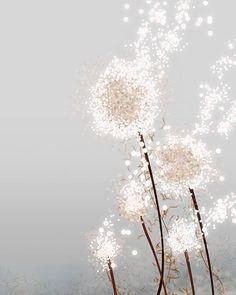 dandelion - silver