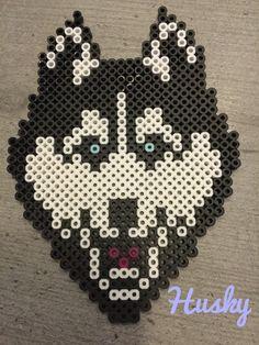 Perler bead husky