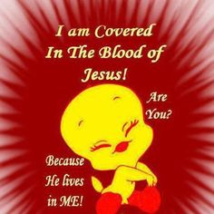 Covered by the Blood of Jesus❤️❤️ Amen! Thank you Lord!