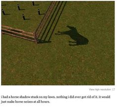 This. | 29 Times The Sims Went Horribly, Hilariously Wrong<-- the same happened to be expect it was a person