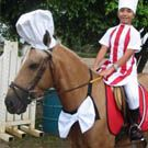 homemade horse costumes | Horses in Costume