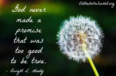 God never made a promise that was too good to be true. - Dwight L. Moody