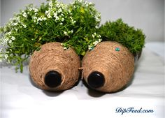 Make your garden the cutest down the street, change the landscape a little bit by adding a little bit of playfulness with the help of these cute hedgehog planters. Reuse before you recycle, put your creativity to work and make original garden decorations with this DIY idea. These adorable hedgehog planters are so easy to …