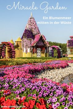 65 Most Colorful Places on Earth Dubai Miracle Garden, Dubai Most Beautiful Gardens, Beautiful Flowers Garden, Beautiful Roses, Amazing Gardens, Beautiful Landscape Wallpaper, Beautiful Landscapes, Dubai Garden, Miracle Garden, Beautiful Nature Pictures