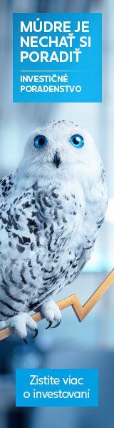 Postup na háčkovanú sieťovku, Háčkovanie, fotopostup - Artmama.sk Owl, Bird, Animals, Animales, Animaux, Owls, Birds, Animal, Animais
