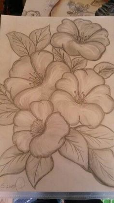 mit bleistift My first pencil draw Flower Art Drawing, Pencil Drawings Of Flowers, Flower Sketches, Pencil Art Drawings, Pencil Sketching, Fabric Paint Designs, Art Drawings Sketches Simple, Drawing Tips, Drawing Drawing