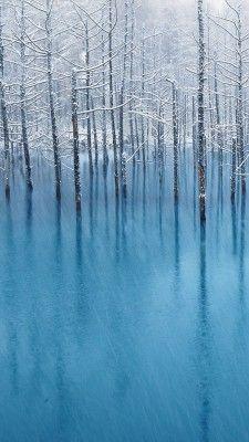 北海道  Biei, Hokkaido, Japan