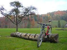 「おしゃれな自転車置き場」の画像検索結果