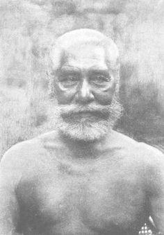 The Samoa Islands by Dr Augustin Kramer 1901 Chief Lei ataua Letaua.