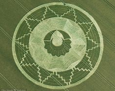 Hobby: The father-son duo have made more than 20 crop circles across Wiltshire, with desig...
