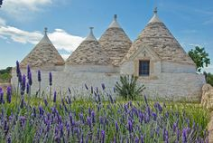 Stay in a  traditional #Trullo, a type of house peculiar to #Puglia in Southern Italy.