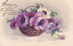 Purple anemones in basket by C. Klein