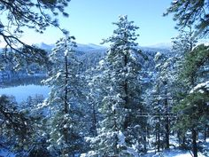 a typical winter day in Evergreen CO in the winter...beautiful.