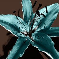 teal and chocolate flower love this elegant flower would be great as decoration for logo,website,blog