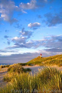 Strand und Dünen, Leuchtturm List-Ost im Hintergrund, Ellenbogen, Sylt, Deutschland