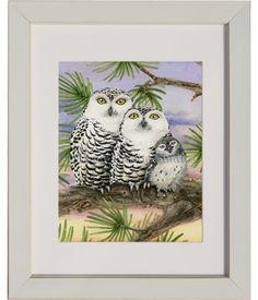 This beautiful watercolor sunset behind the Snow Owl family shows them settling in for the night in this big pine tree. To see how this painting was made visit: http://tracylizottestudios.com/index.php/post/103-the-making-of-owl-tree