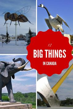 Fun landmarks that showcase towns across the country. There's the Canada Goose in Wawa, the big apple in Cobourg, the big fiddle in Sydney Nova Scotia etc..