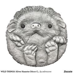 Mongolia 2012 500 togrog Long-eared Hedgehog - Hemiechinus auritus UNC Silver Coin :: Top World Coins Long Eared Hedgehog, Wildlife Protection, Coin Store, Hobo Nickel, Coin Art, Old Money, Swarovski Stones, Round Pillow, World Coins