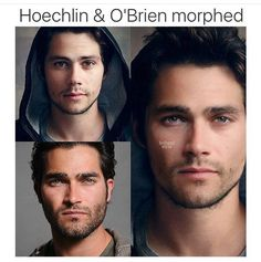 The perfect guy Teen Wolf Imagines, Teen Wolf Memes, Teen Wolf Funny, Teen Wolf Boys, Teen Wolf Cast, Teen Wolf Ships, Theme Harry Potter, Wolf Quotes, Tyler Hoechlin
