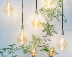 13 fascinating light fixtures from NY Design Week