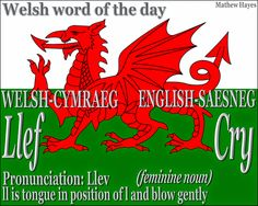 #Welsh word of the day: Llef/ #Cry