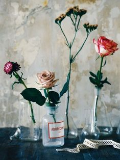 Vintage blooms