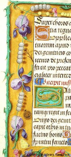 Margins with scattered flowers, including iris and roses, interspersed with rosary (?) beads, with small medal inscribed MA[RIA] and chain of violas, inhabited by butterfly | Book of Hours | Belgium, Bruges |  ca. 1500 | The Morgan Library & Museum