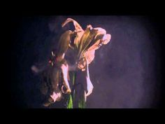 ▶ Lykke Li - No Rest For The Wicked (Official Audio) - YouTube