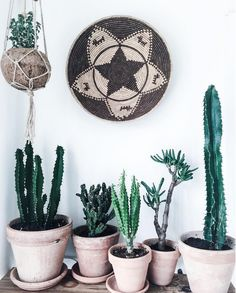 my scandinavian home: cactus in a Danish home full of vintage finds
