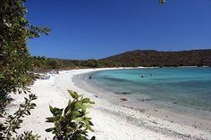 Salt Pond Cove, St John, US Virgin Islands.  One of my favorite places in the world!!