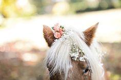 The Hobbit themed wedding / Kemper Mills Fant Photography