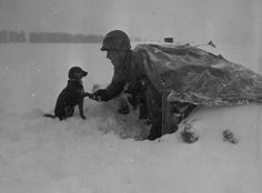 A Soldier of the 535th Anti-Aircraft Artillery Battalion, 99th Infantry Division, with his pup during the Battle of the Bulge. Belgium, January 4, 1945.