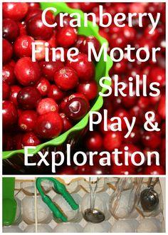 Fine Motor Skills with Cranberries {Fine Motor Fridays}