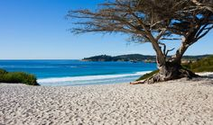 Carmel City Beach is a long, wide, white sand beach that is hard to beat anywhere on the California Central Coast. It can be packed here on sunny days, but