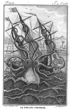 Histoire naturelle, générale et particuliere des Mollusques Pierre Denys de Montfort 1802