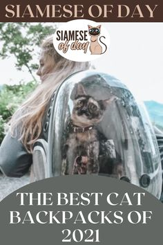 Select your cat backpack with caution. Durability is crucial. Your cat might tear it to pieces if it's too thin (you've seen what those claws can do). Of course, you want your cat to be as comfortable as possible, so pick a backpack with a soft inner lining and plenty of ventilation. #siamese #siameseofday #cats #pets #kittens #Blog #cattips #cathealth #kitten #justcats Cat Backpack, Kitten Care, Cat Health, Siamese, Cool Cats, Claws, Kittens, Good Things, Backpacks