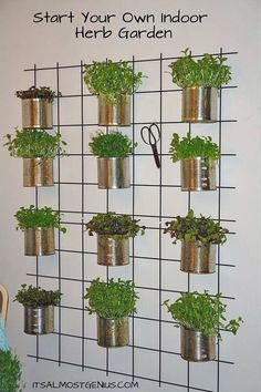 Creative Indoor Vertical Wall Gardens • Lots of Great Ideas and Tutorials! Including, from 'it's almost genius', this cool vertical garden idea using tin cans.