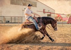The most beautiful thing about the reining horse is the LOOSE rein. Amazing communication without heavy hands.