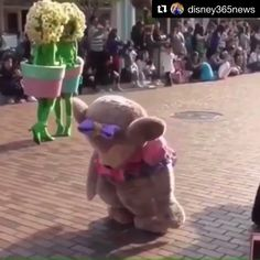 "The Incredi-Kota 🕶 on Twitter: ""Can we just stop and recognize that Duffy, StellaLou & Gelatoni are TRUE friends and rushed to ShellieMay's rescue when she fainted?! Sorry Disney, but friends come first. 🙌🏻💯  If this isn't true friendship, I don't know what is.… https://t.co/QKDJSxu720"""