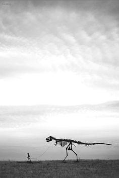 walking rex