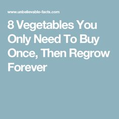 8 Vegetables You Only Need To Buy Once, Then Regrow Forever