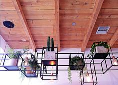 A Modern Juice Bar Designed by Bells & Whistles. Nice way to add dimension to ceiling.