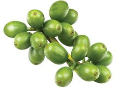 What's in the Green Coffee Bean Extract that makes it a Fat Buster? Clue, It's Not the Caffeine